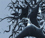 Coping with Dementia